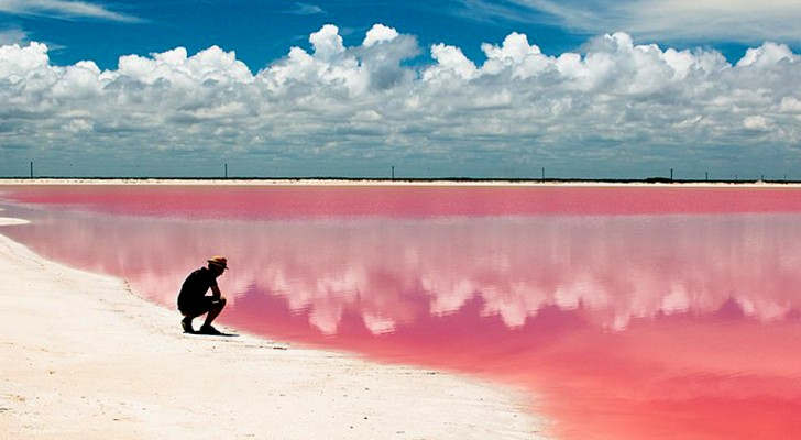 Deze roze getinte lagune bevindt zich in Mexico, maar lijkt uit een sprookje te zijn gekomen