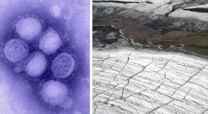 Das Schmelzen des Permafrostes reaktiviert Viren und Bakterien, die für immer vernichtet schienen