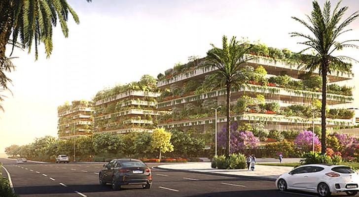 Trois bâtiments couverts de milliers de plantes et d'arbres : voici la première forêt verticale d'Afrique