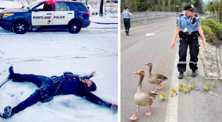 11 photos drôles montrent le côté plus