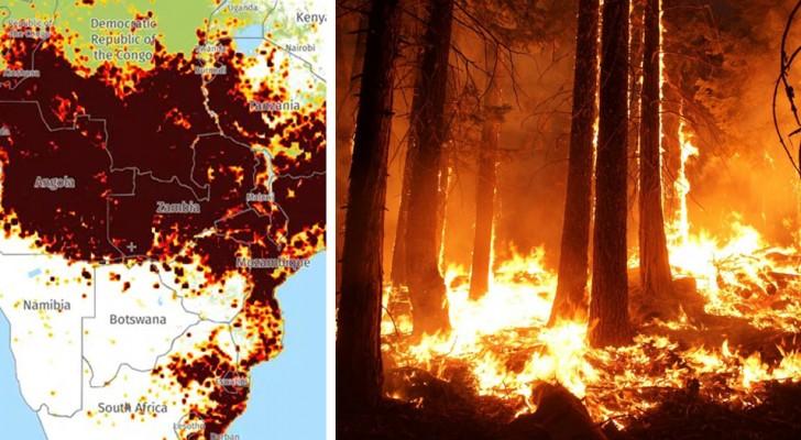 Naast Zuid-Amerika brandt ook Afrika: de branden in Angola en Congo zijn het dubbele van die van de Amazone
