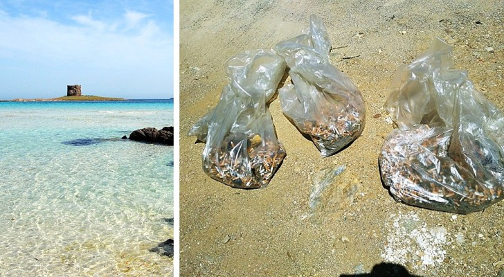 Sardegna: sulla spiaggia de La Pelosa raccolti oltre 20mila mozziconi di sigarette in un weekend