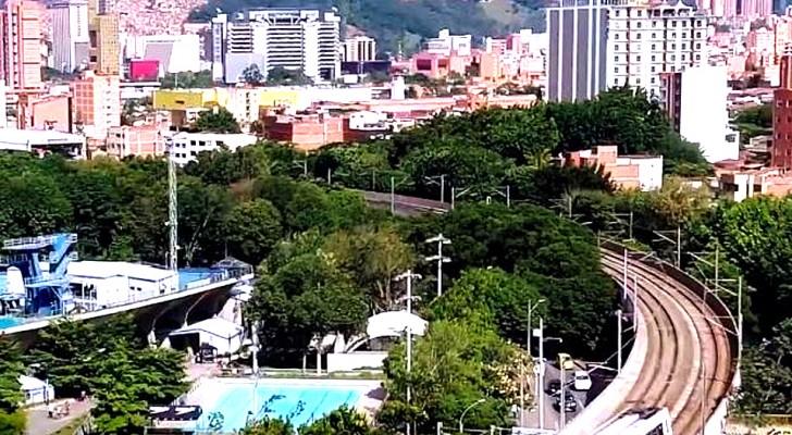 Piantare alberi per ridurre le temperature in città: ecco la soluzione dei