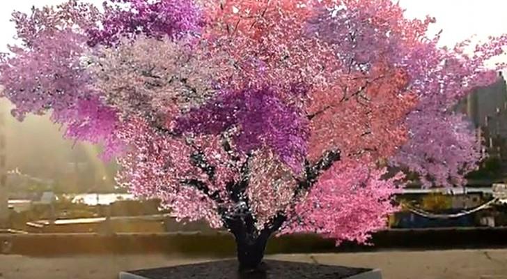 Dit is de boom van Frankenstein: de ongelooflijke boom die 40 verschillende soorten fruit produceert