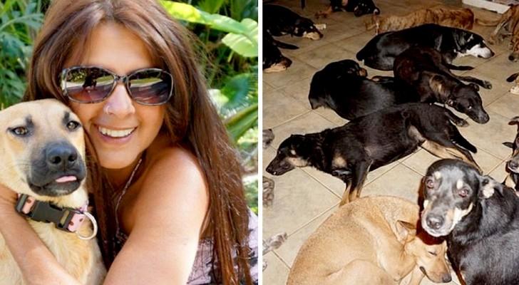Cette femme a accueilli 97 chiens dans sa maison pour les sauver de la violence de l'ouragan Dorian des Bahamas