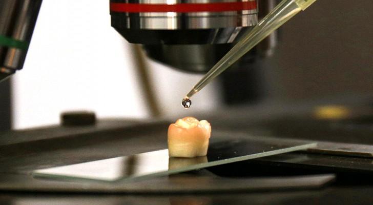 Diese Wissenschaftler haben einen effektiven Weg gefunden, um den Zahnschmelz zu regenerieren