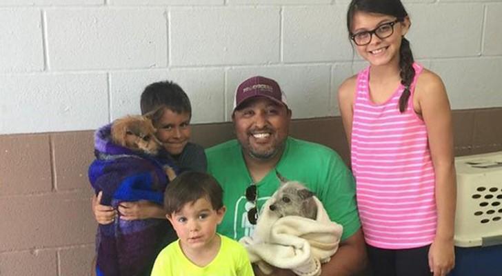 Encuentran al perro luego de 6 años y adoptan también al amigo que se ha quedado junto a él cuando vivía por la calle