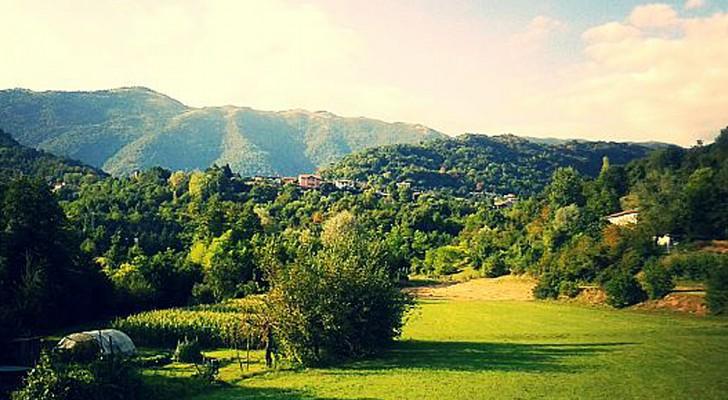 Disboscata un'area patrimonio dell'Unesco per far spazio ai vigneti di prosecco: tre denunce in Veneto
