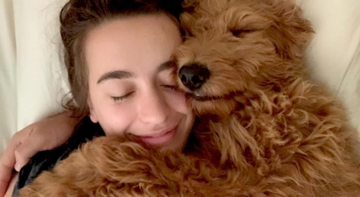 Avere un cane in casa migliora la qualità della vita: lo rivela una ricerca scientifica