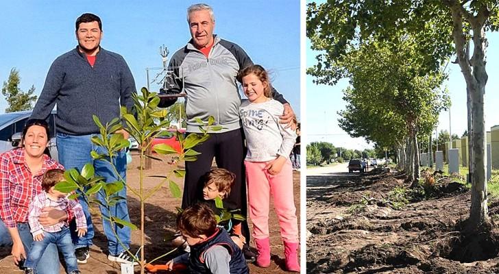 Dal 1995 in questa città piantano un albero per ogni nuovo nato: ora sono migliaia