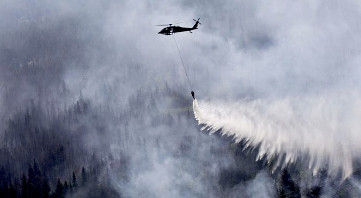 Après les incendies en Amazonie et dans l'Arctique, la science nous met en garde : nous vivons l'ère du