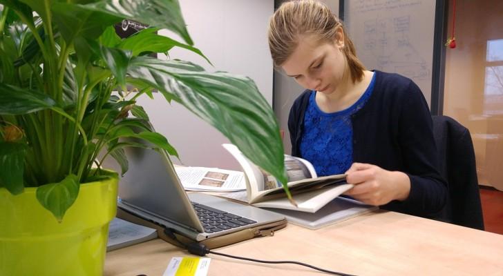Studiare è il modo migliore per mantenere in forma il nostro cervello: la scienza lo conferma