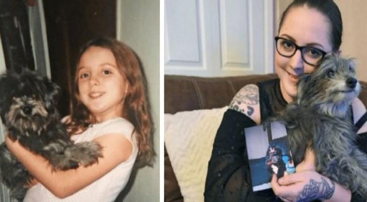 Esta mulher adotou uma cachorrinha idosa e se deu conta que era o cachorro que tinha quando era pequena