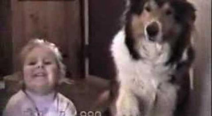 Non credi che un cane possa sorridere davanti alla macchina fotografica?