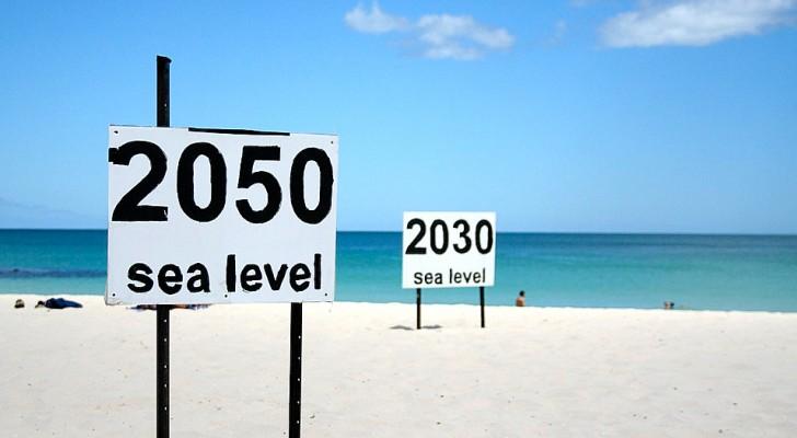 Un rapport de l'ONU photographie l'état des océans : d'ici 2100, ils pourraient monter de plus d'un mètre