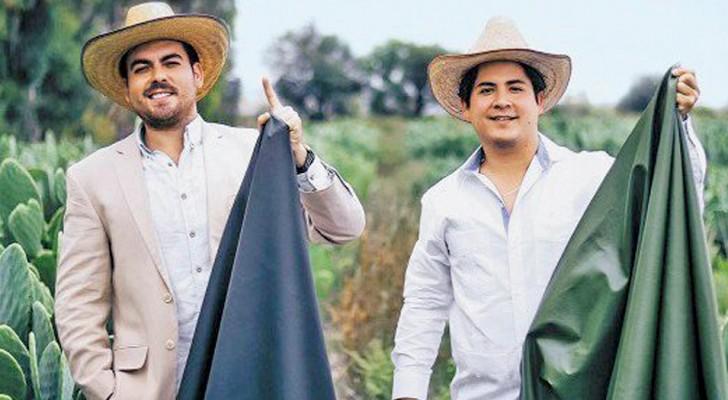 Deze twee ondernemers creëren een duurzaam kunstleer afgeleid van de eigenschappen van de Mexicaanse cactus