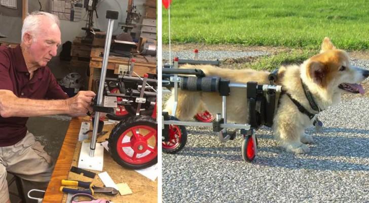 Un ancien vétérinaire de 90 ans fabrique des fauteuils roulants pour animaux handicapés :