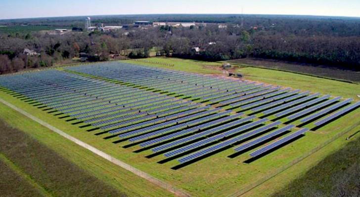 Jimmy Carter heeft een zonnepark gebouwd dat zijn stad 50% hernieuwbare energie biedt