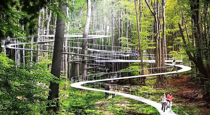 À Istanbul, ce parc suspendu entre les arbres permettra à chacun de redécouvrir la nature sous un angle nouveau
