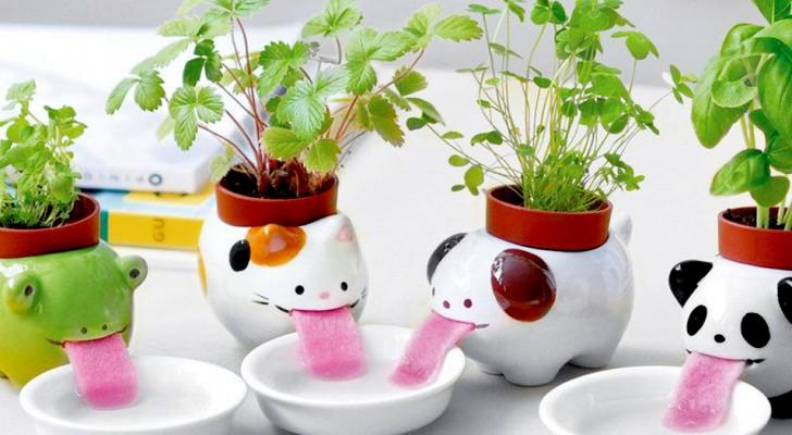Deze leuke bloempotten houden je planten gehydrateerd zonder ze ooit water te hoeven geven