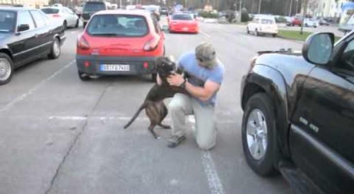 Un soldato torna dalla missione e il suo cane perde completamente il controllo