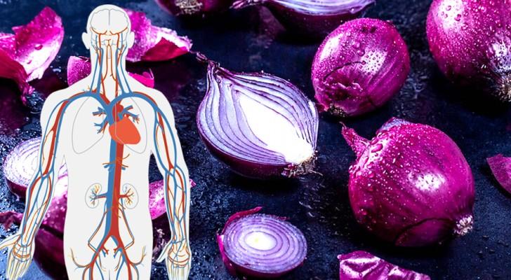 Die Vorteile der roten Zwiebel: ein leckeres Essen und Verbündeter unserer Gesundheit