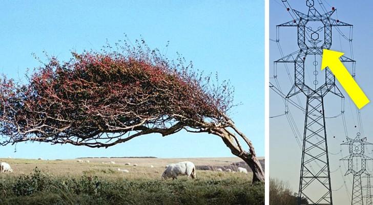 Ces 14 photos montrent qu'il est toujours possible de s'émerveiller, même si l'on pense avoir tout vu