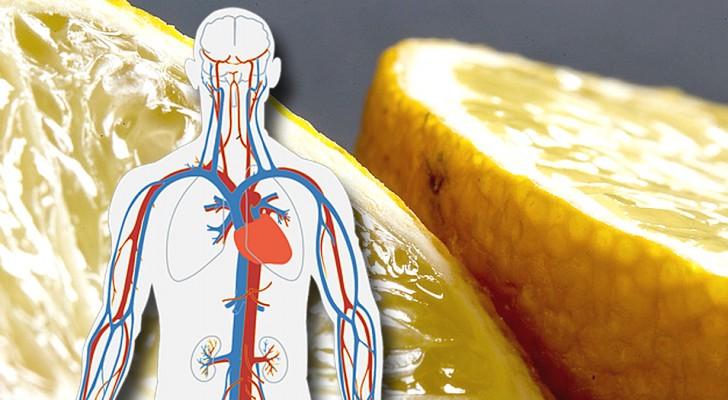Infusion d'écorces de citron : un excellent allié pour la santé de notre cœur