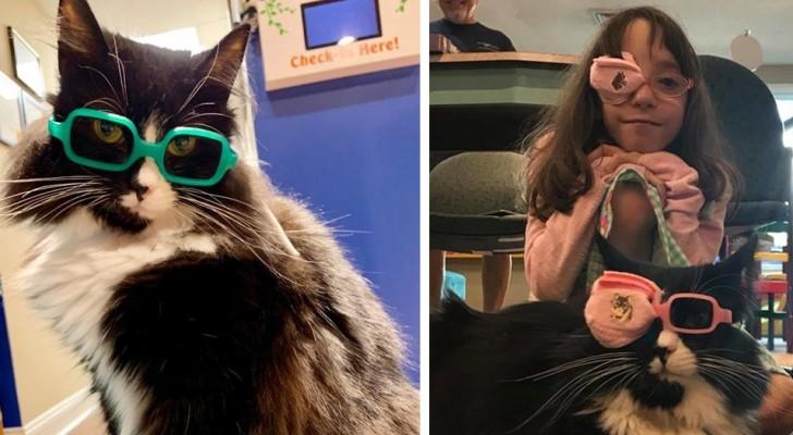 Questo gatto aiuta i bambini che devono mettersi gli occhiali ad accettare la loro condizione in modo divertente