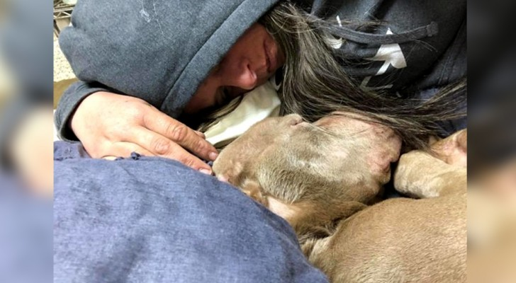 This woman spent the night with a terminally-ill dog, comforting him in his last moments