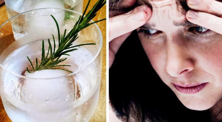 Bere acqua di rosmarino migliora la nostra memoria: lo suggerisce uno studio britannico