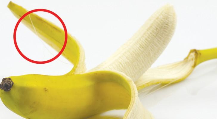 Les fils sur les bananes ne devraient pas être enlevés : ils sont riches en fibres et en nutriments