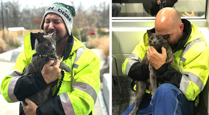 A truck driver cries tears of joy when he finds his lost cat that had always accompanied him on his trips