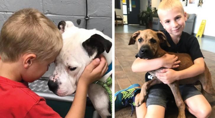 Dopo aver visitato un canile, questo bambino di 7 anni decide di trovare una casa a tutti i cani e ci riesce