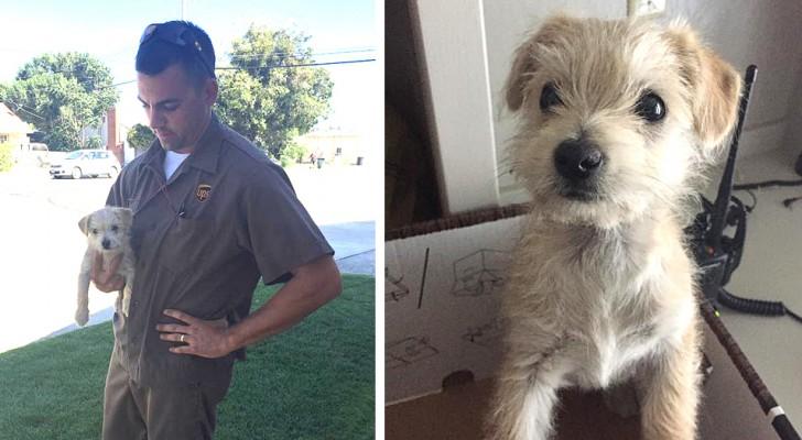 Efter att ha sett en bilförare överge en hund längs vägkanten stannade den här budbäraren och räddade hunden