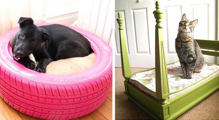 15 lavoretti fai-da-te per realizzare il letto perfetto ai vostri amici a quattro zampe