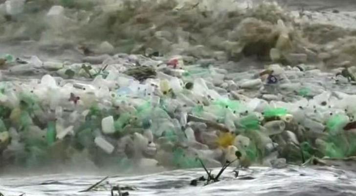 In Sudafrica è arrivata un'ondata di bottiglie di plastica: il mare implora di essere salvato