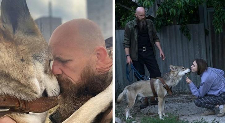 Deze man redde een wolvenwelp en voedde hem op als huisdier