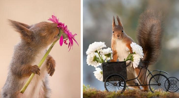 12 foto indimenticabili di curiosi scoiattoli alle prese con la natura e altri scenari fantastici