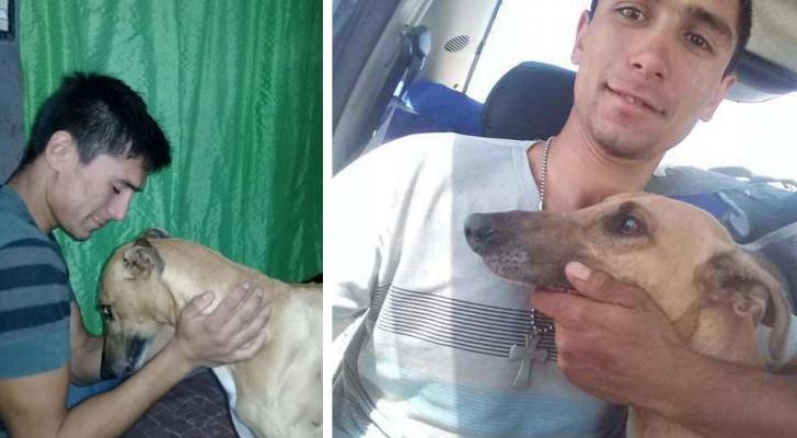 Sie stehlen seinen Hund und er bietet sein Auto als Belohnung für denjenigen an, der ihn zurückbringt