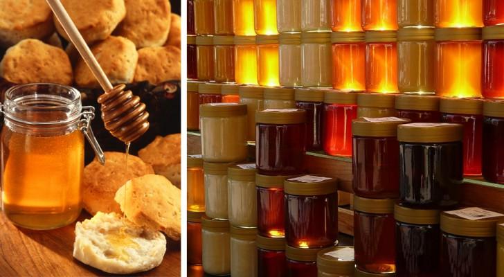 Le miel est un aliment riche en nutriments et présente de nombreux avantages pour la santé