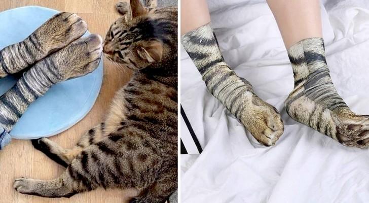 Arrivano sul mercato le calze che riproducono le zampe dei nostri animali preferiti