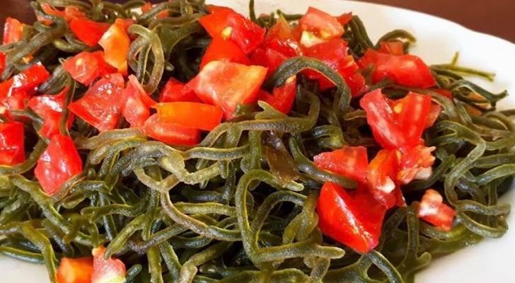 Una particolare alga marina delle Filippine potrebbe avere proprietà anti-tumorali e benefiche per la pelle