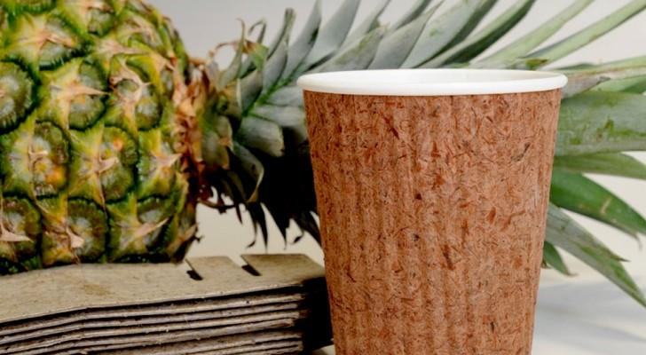 Hier kommt Pinyapel, der erste Lebensmittelbehälter aus Ananasblättern als Alternative zu Plastik