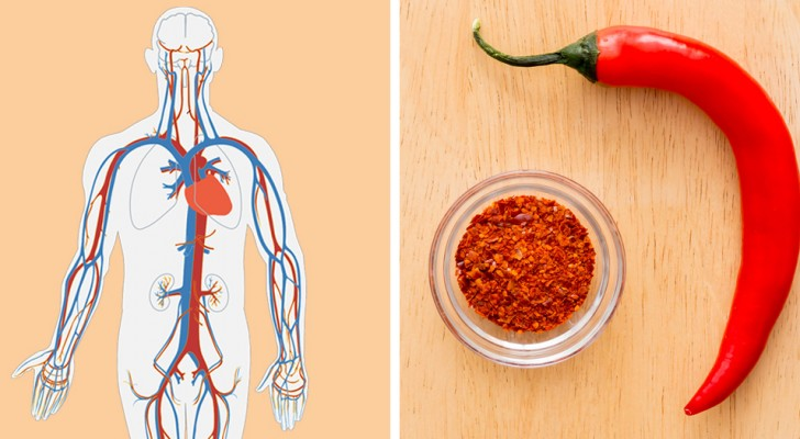 La consommation de ces 5 aliments peut contribuer à l'amélioration de la circulation sanguine