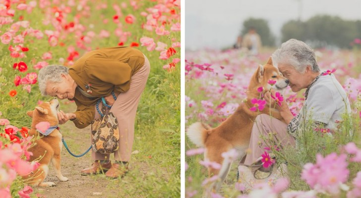 Un ragazzo è riuscito a immortalare nelle sue foto la splendida amicizia tra la nonna e il suo cane