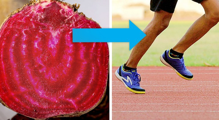 Rote Rübe kann helfen, den Blutdruck zu senken und unsere sportliche Leistung zu verbessern