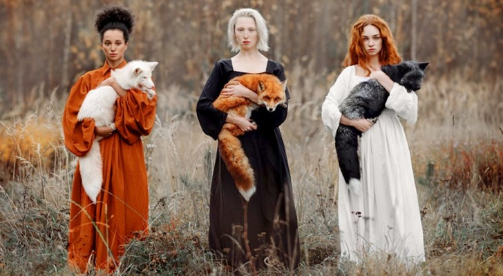 Eine Frau fotografiert 3 Füchse in verschiedenen Farben, die die Schönheit der Natur in allen ihren Nuancen zeigen