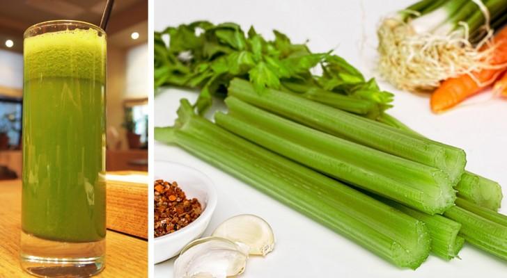 El apio: un importante aliado en las dietas para adelgazar, que ayuda a contrarrestar la retención de líquido