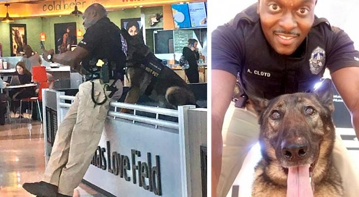 Une femme photographie un officier qui prend un adorable selfie avec son chien policier